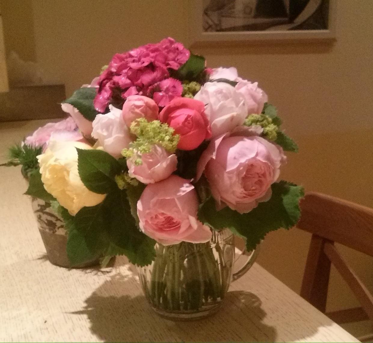 anglické růže David Austin